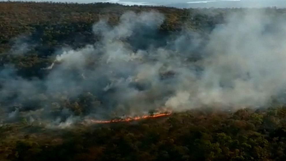 Amazonia incendio